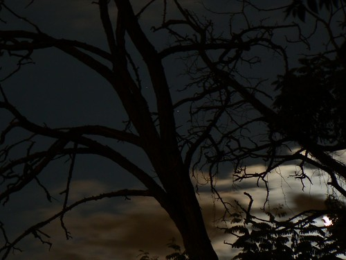 Legend of Deepest Darkest Africa
