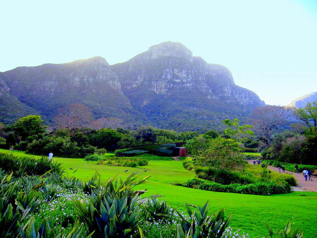 South Africa Cape Peninsula Kirstenbosch National Botani Flickr