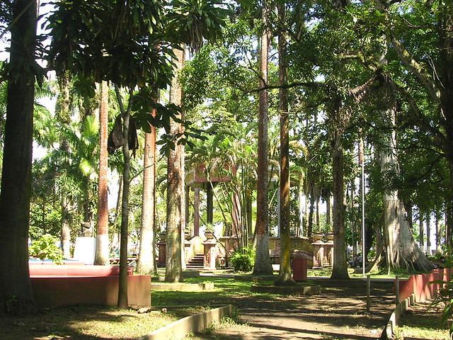 Limon - Parque Vargas | Parque Vargas, a tropical ...