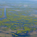 The wetlands face an inevitable impact.