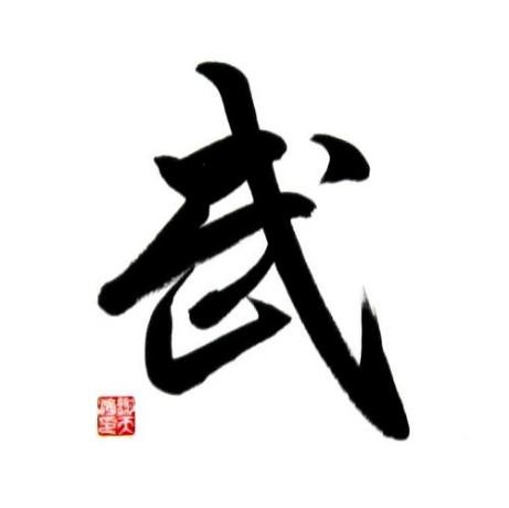 Chinese Symbol For Kung Fu Calligraphy Painting The