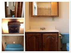 The 2nd floor bathroom | by Nicole Balch