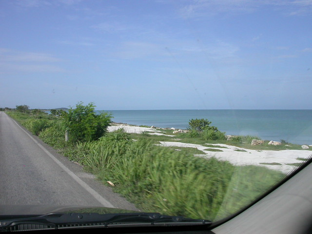 along the gulf of mexico