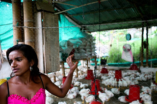 Yanath, a poultry farmer in the village of San Nicolas | by World Bank Photo Collection