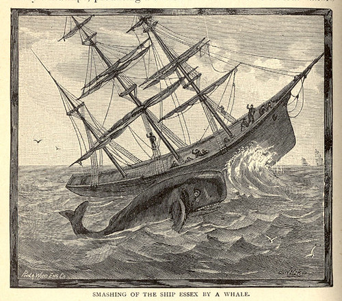 Smashing Of The Ship Essex By A Whale  Flickr - Photo -9889