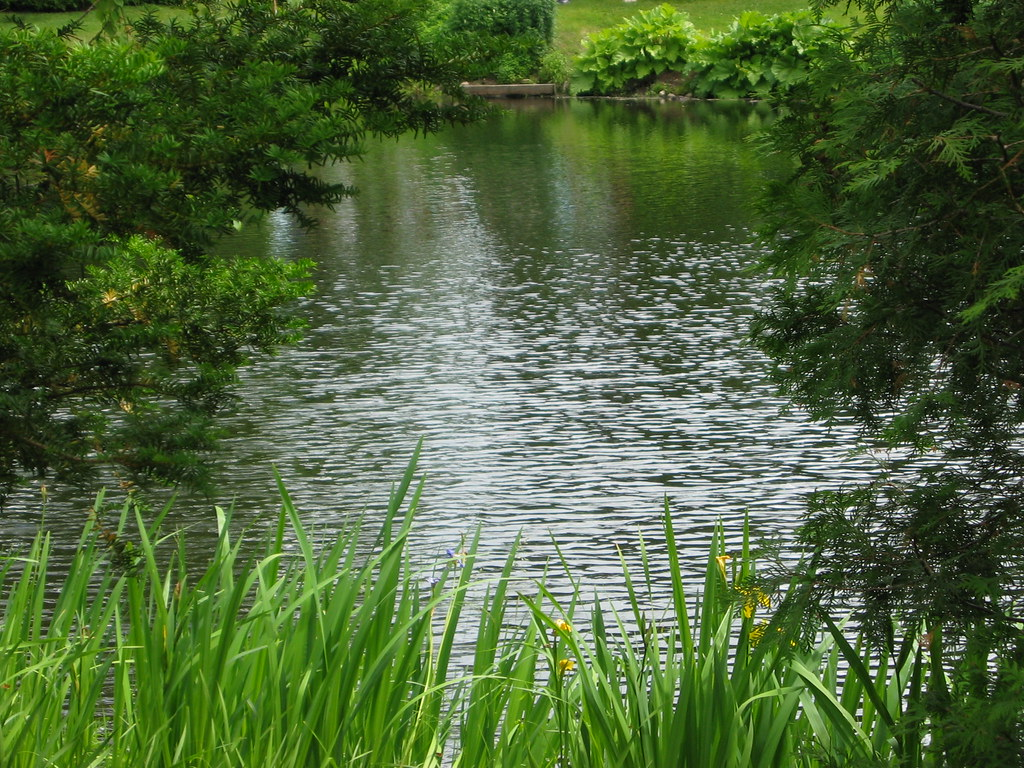 Point d 39 eau jardin les quatre vents au del de la for Jardin quatre vents