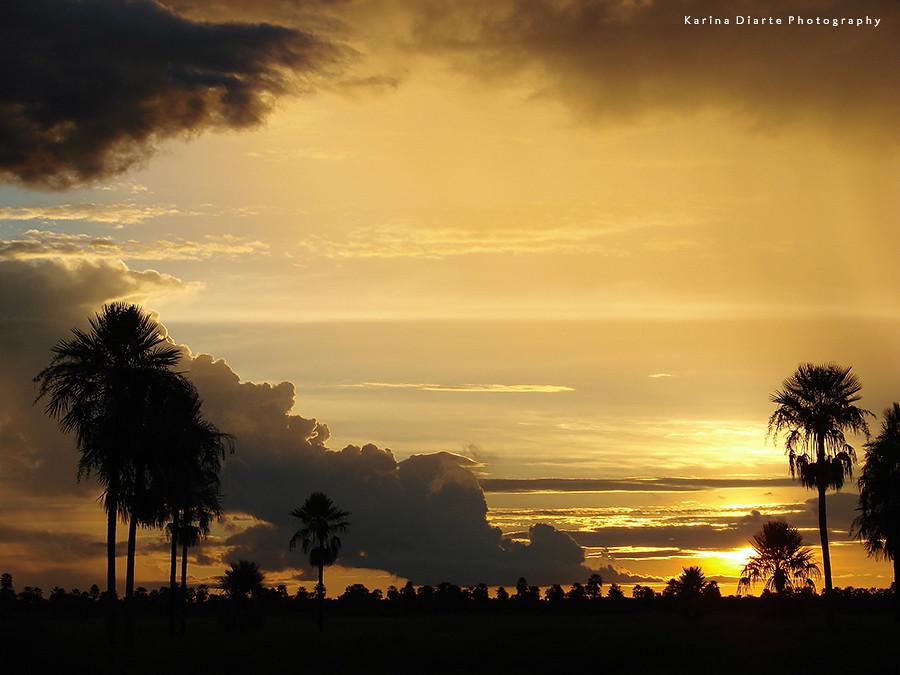 Atardecer Cobrizo / Coppery Sunset