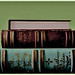 libros sobre fondo verde (founds objects)