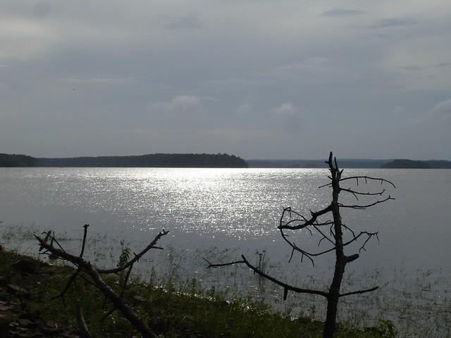 Degray days taken at lake degray arkansas on july 2 for Caddo lake fishing report
