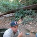 chris and a redwood