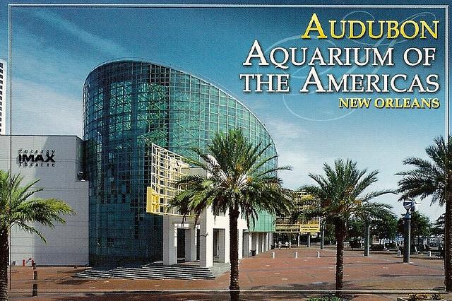Audubon Aquarium Of The Americas New Orleans
