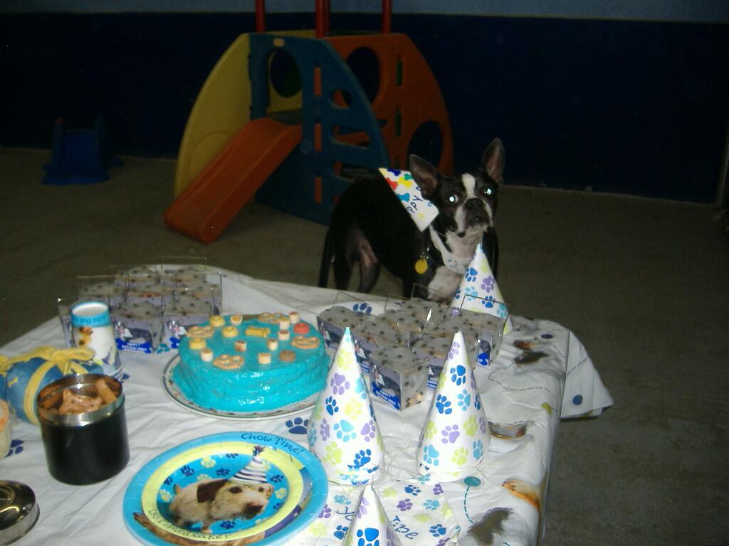 Birthday Cake Oreo Balls