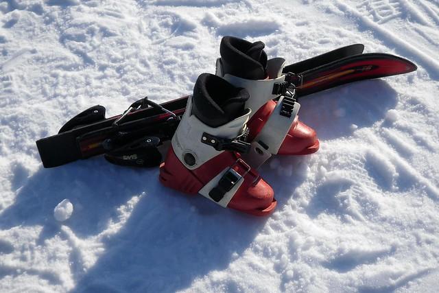 Mini ski
