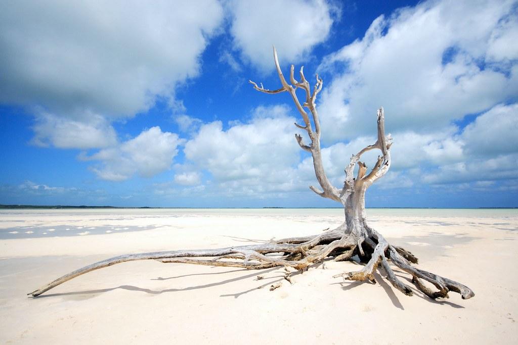 Island Harbour Bahamas Beach