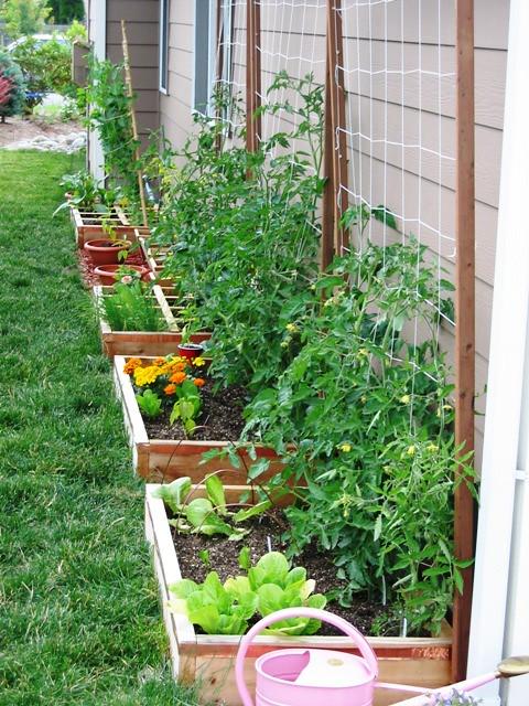 Our Suburban Garden   Who has room for a garden? We have a s…   Flickr