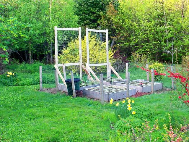 Square Foot Garden Behind Rabbit Fence For More