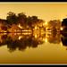 Lago do Ibirapuera, noite em Sampa