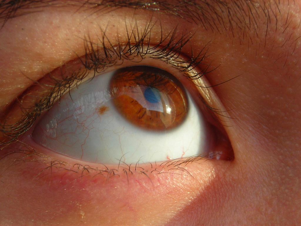 Como hacer el maquillaje correcto de los ojo con los círculos oscuros