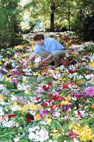 selects flowers to put on diana 39 s grave flickr photo sharing