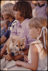 Youngster Unknowingly Shares an Ice Cream Stick with a Dog as She Watches Judging During the Kiddies Parade in Johnson Park in New Ulm, Minnesota...