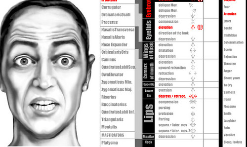 facial expressions research paper