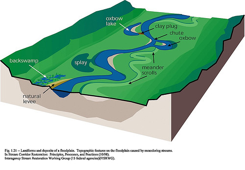Watershed Tributary Diagram Stream Characteristics...