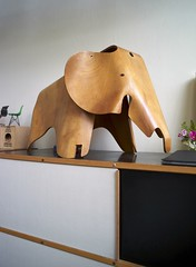 Eames House (Case Study House) the Ply Elephant | by An Amateur