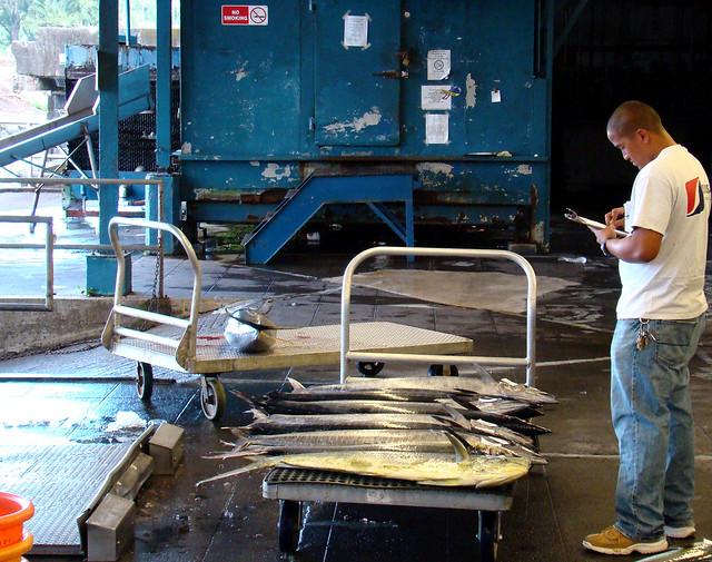 Clipboard explore istolethetv 39 s photos on flickr for Suisan fish market