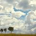 Vertus Cloudscape