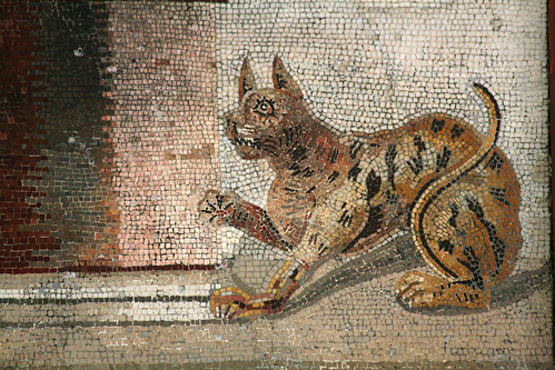 Detail of a mosaic from the House of the Faun, Pompeii | by Mirjam75