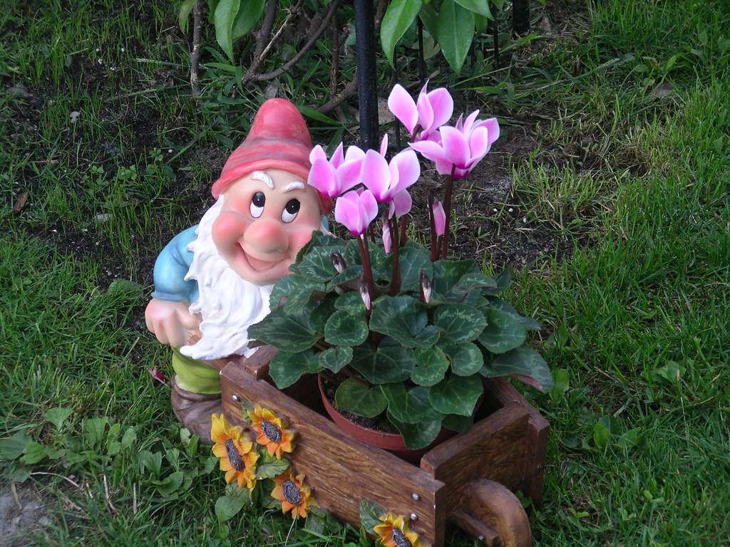 Summer07 349 gruppo di liberazione nani da giardino rossella flickr - Alberi nani da giardino ...