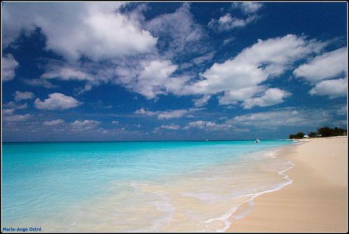 Plage De Radio Beach 238 Le De Bimini Bahamas Flickr