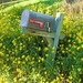 Mailbox Bouquet