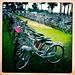 Bike Rows