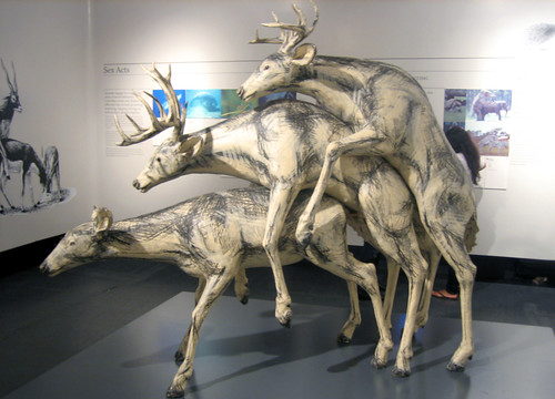 20101009 1716 - Museum Of Sex - Deer Threesome - Prairie -3562