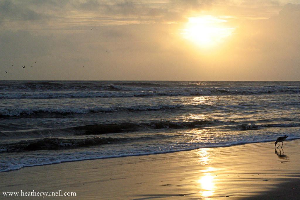 North Carolina Ocean Sunrise
