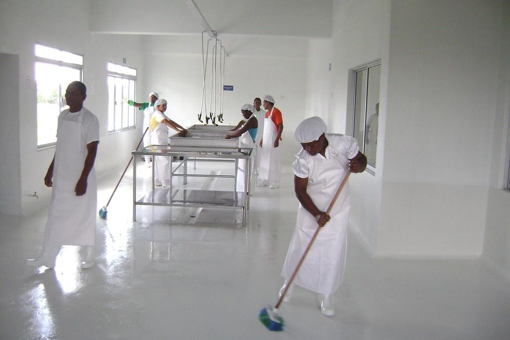 Limpieza y desinfecci n de mesas mesones y pisos de la pl for Limpieza y desinfeccion de alimentos