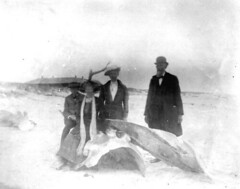 Posing on whale bones: Saint George Island, Florida | by State Library and Archives of Florida