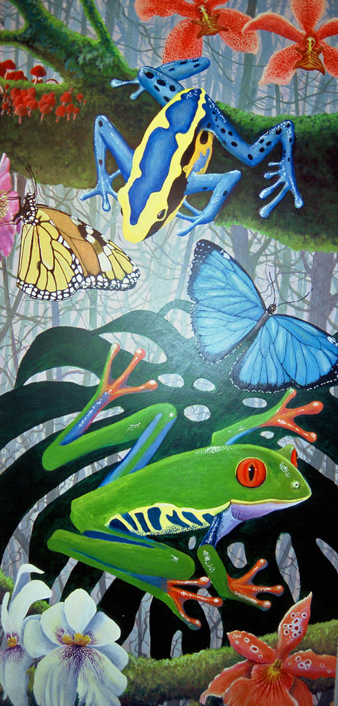 Painting Tropical Rainforest Frogs Butterflies And Orch
