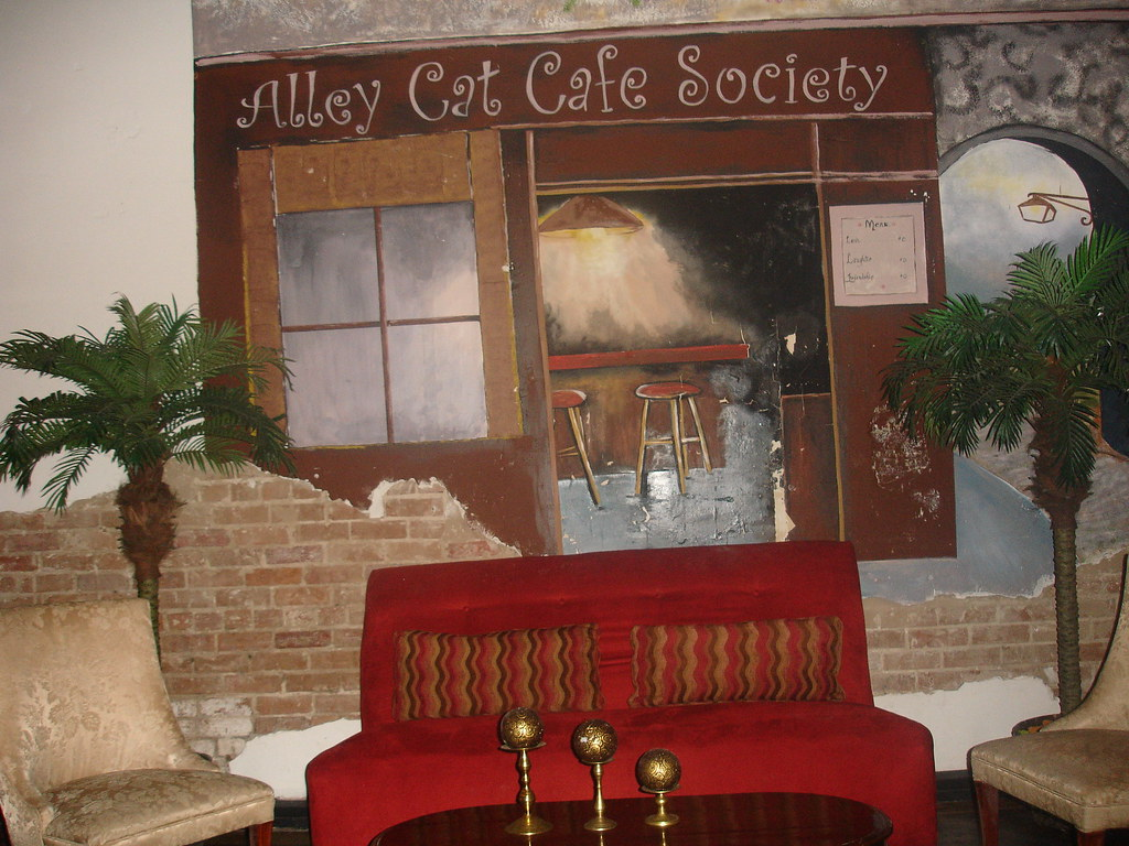 Alley Cat Cafe Ft Collins