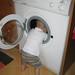 Washer girl
