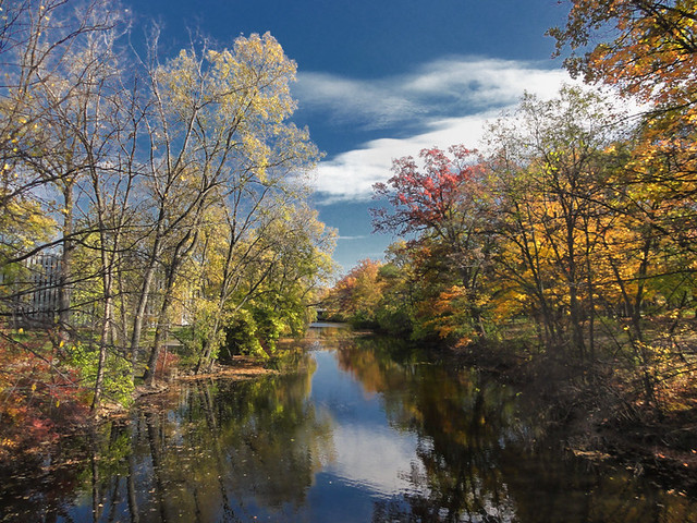 The red cedar river michigan state university east