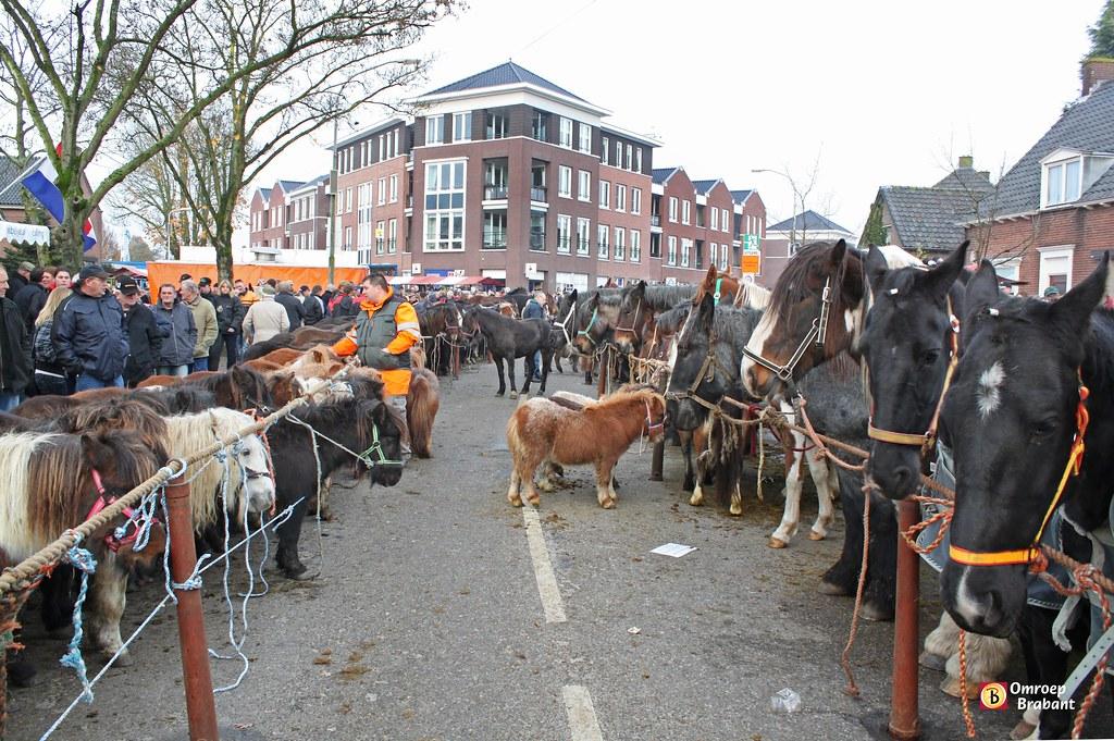 Paardenmarkt Hedel | Omroep Brabant | Flickr