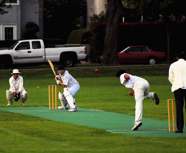cricket explore patrick dohenys photos on flickr