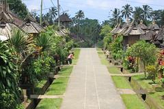 Enjoy a trip to cultural village of Kertalangu - Things to do in Denpasar (Bali)