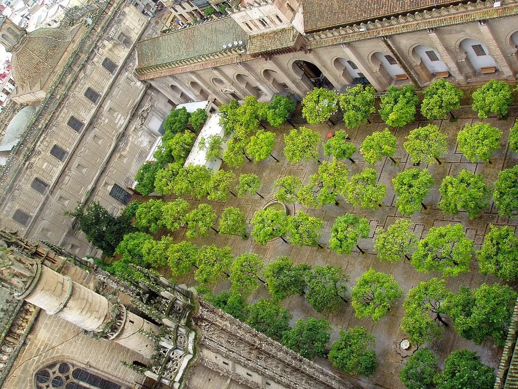 Patio de los naranjos, Sevilla.  Esta foto participó en ...