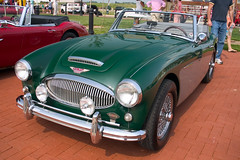 Austin Healey | by The Pug Father