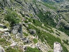 Haut vallon de Coracchia
