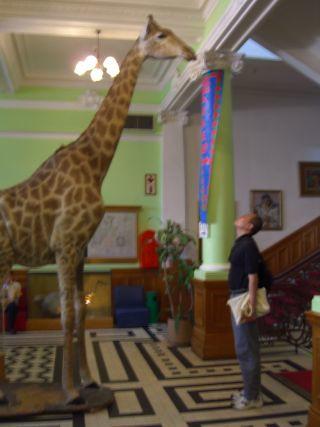 Natural History Museum Durban