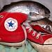 Converse shoe trout conversing